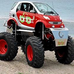 Spaßfahrzeug Smart Forfun 2