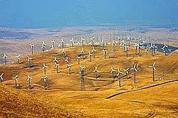 Windpark in Kalifornien
