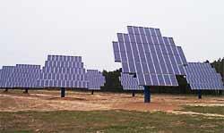 Solarwald Wulkow