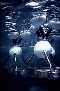 OWEC-Test im Wassertank